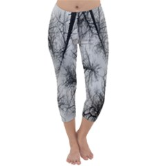Trees Without Leaves Capri Winter Leggings  by Nexatart