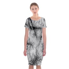 Trees Without Leaves Classic Short Sleeve Midi Dress