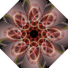 Fractal Fabric Ball Isolated On Black Background Folding Umbrellas by Nexatart