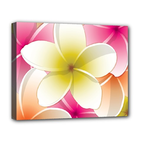 Frangipani Flower Floral White Pink Yellow Deluxe Canvas 20  X 16   by Mariart