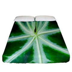 Green Leaf Macro Detail Fitted Sheet (california King Size) by Nexatart