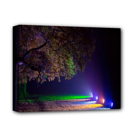 Illuminated Trees At Night Deluxe Canvas 14  X 11