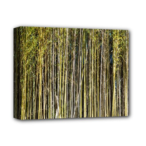 Bamboo Trees Background Deluxe Canvas 14  X 11  by Nexatart