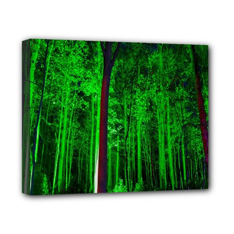 Spooky Forest With Illuminated Trees Canvas 10  X 8  by Nexatart