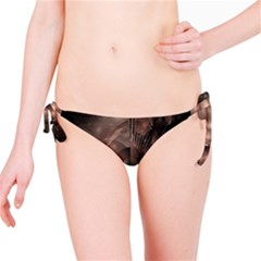 A Fractal Image In Shades Of Brown Bikini Bottom