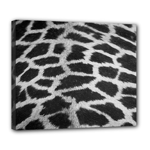 Black And White Giraffe Skin Pattern Deluxe Canvas 24  X 20