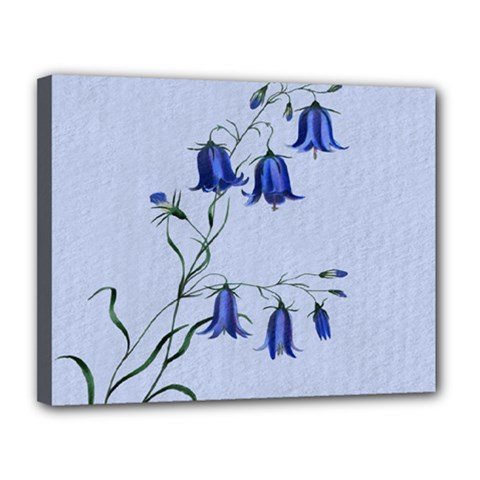 Floral Blue Bluebell Flowers Watercolor Painting Canvas 14  X 11  by Nexatart