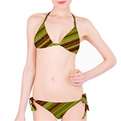 Stripes Course Texture Background Bikini Set