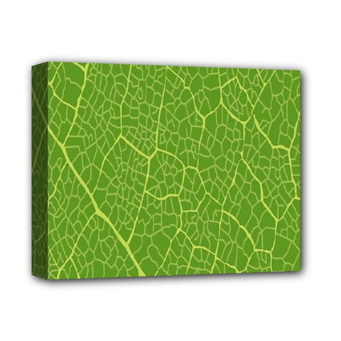 Green Leaf Line Deluxe Canvas 14  X 11  by Mariart