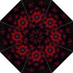Fractal Abstract Blossom Bloom Red Folding Umbrellas by Nexatart
