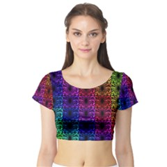 Rainbow Grid Form Abstract Short Sleeve Crop Top (tight Fit)