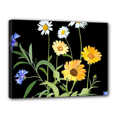 Flowers Of The Field Canvas 16  X 12  by Nexatart
