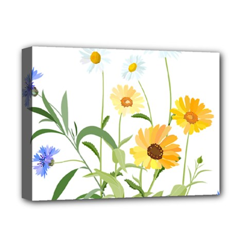 Flowers Flower Of The Field Deluxe Canvas 16  X 12
