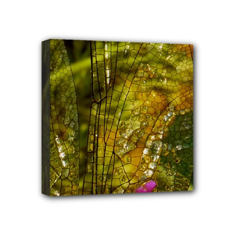 Dragonfly Dragonfly Wing Insect Mini Canvas 4  X 4