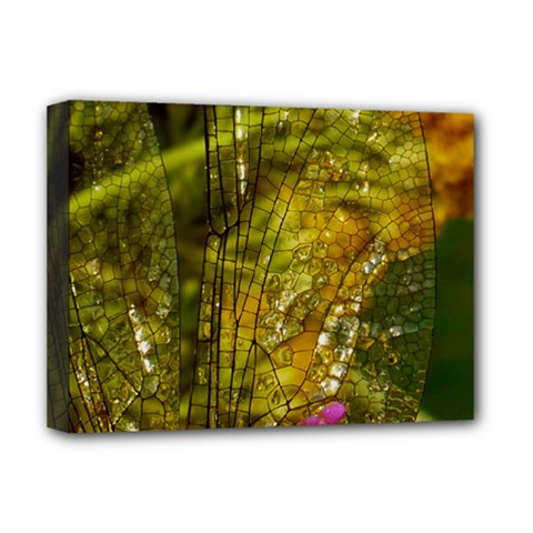 Dragonfly Dragonfly Wing Insect Deluxe Canvas 16  X 12   by Nexatart