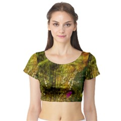 Dragonfly Dragonfly Wing Insect Short Sleeve Crop Top (tight Fit)