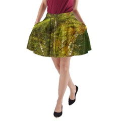 Dragonfly Dragonfly Wing Insect A Line Pocket Skirt by Nexatart