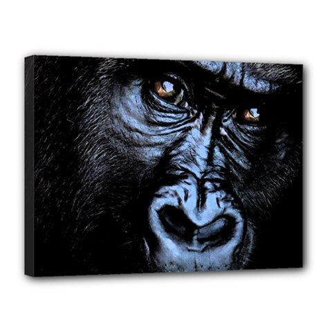 Gorilla Canvas 16  X 12  by Valentinaart
