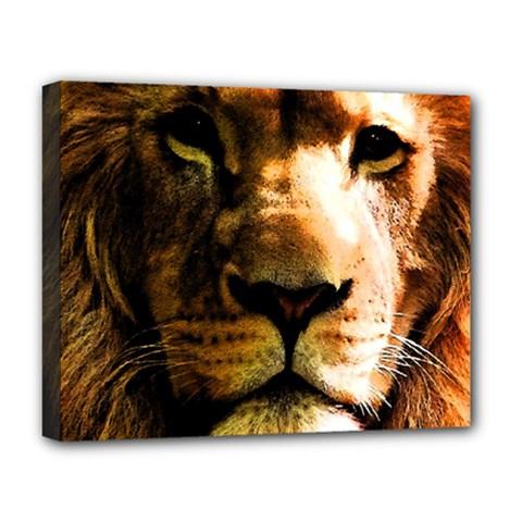 Lion  Deluxe Canvas 20  X 16   by Valentinaart