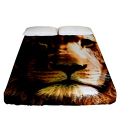 Lion  Fitted Sheet (california King Size) by Valentinaart