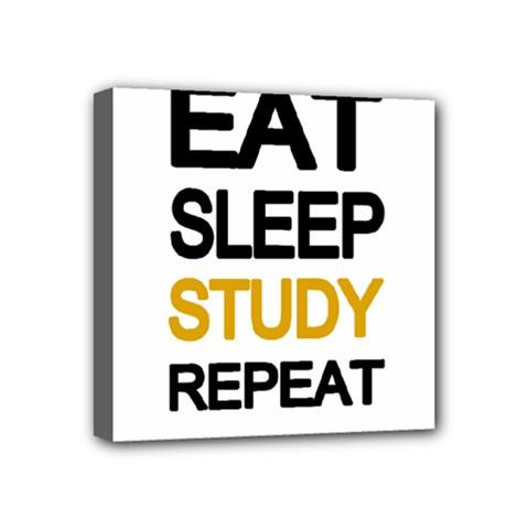 Eat Sleep Study Repeat Mini Canvas 4  X 4