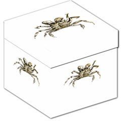 Dark Crab Photo Storage Stool 12   by dflcprints