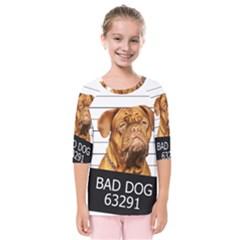 Bad Dog Kids  Quarter Sleeve Raglan Tee