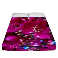 Pretty In Fuchsia 2 Fitted Sheet (king Size) by dawnsiegler