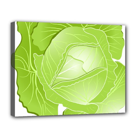 Cabbage Leaf Vegetable Green Canvas 14  X 11  by Mariart