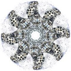 Snow Leopard Straight Umbrellas by kostart