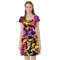 Purple Yellow Flower Plant Short Sleeve Skater Dress
