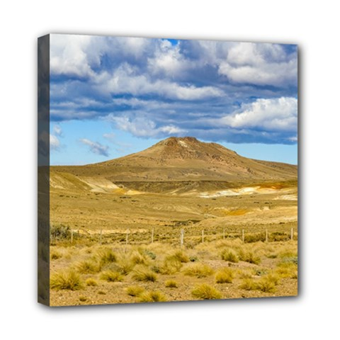 Patagonian Landscape Scene, Argentina Mini Canvas 8  X 8  by dflcprints