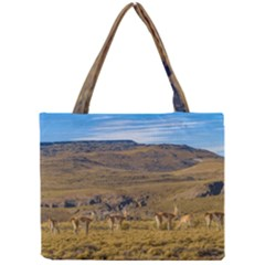Group Of Vicunas At Patagonian Landscape, Argentina Mini Tote Bag by dflcprints