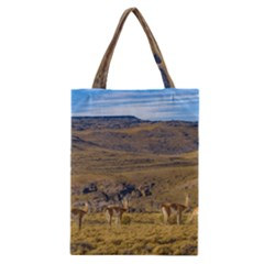 Group Of Vicunas At Patagonian Landscape, Argentina Classic Tote Bag by dflcprints