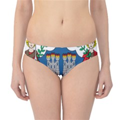 City Of Dublin Coat Of Arms Hipster Bikini Bottoms