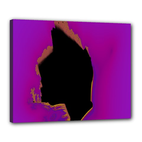Buffalo Fractal Black Purple Space Canvas 20  X 16  by Mariart