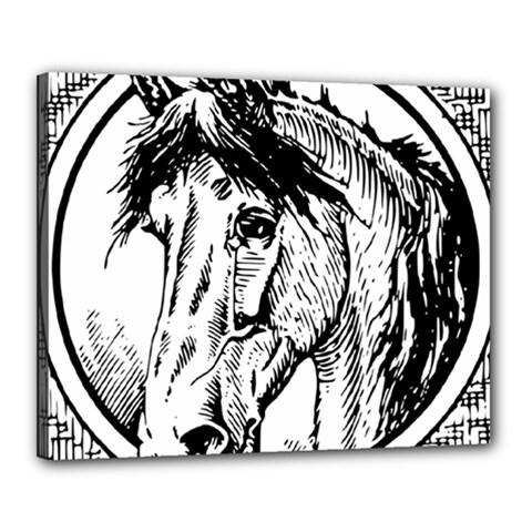 Framed Horse Canvas 20  X 16  by Nexatart