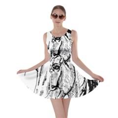 Framed Horse Skater Dress