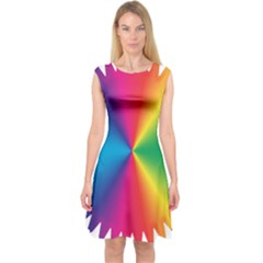 Rainbow Seal Re Imagined Capsleeve Midi Dress by Nexatart