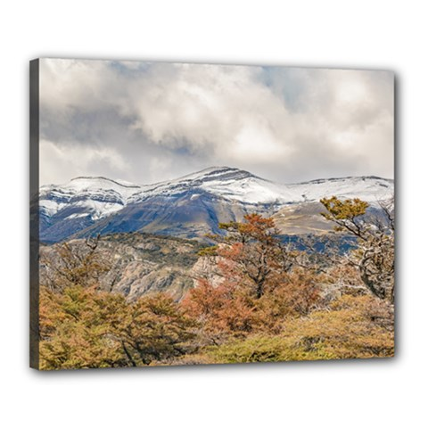 Forest And Snowy Mountains, Patagonia, Argentina Canvas 20  X 16  by dflcprints