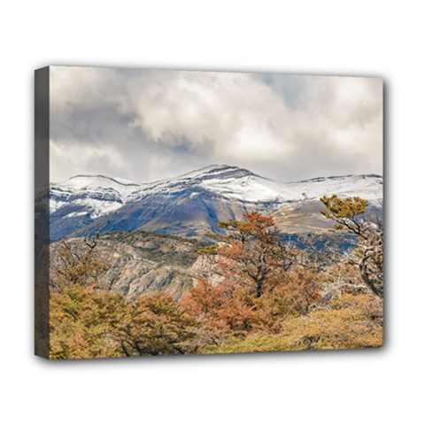 Forest And Snowy Mountains, Patagonia, Argentina Deluxe Canvas 20  X 16   by dflcprints