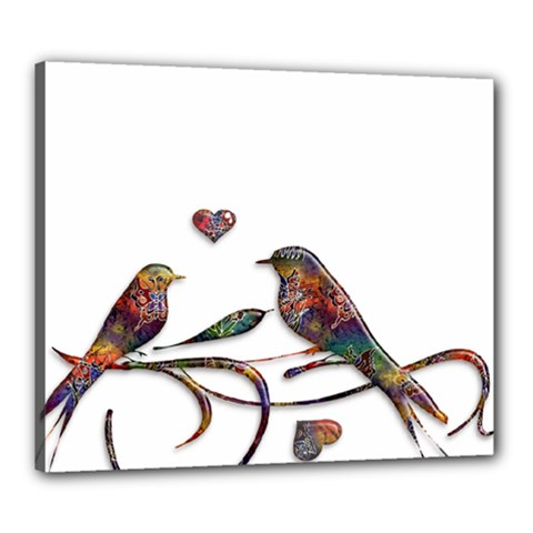 Birds Abstract Exotic Colorful Canvas 24  X 20  by Nexatart
