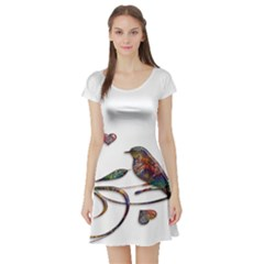 Birds Abstract Exotic Colorful Short Sleeve Skater Dress