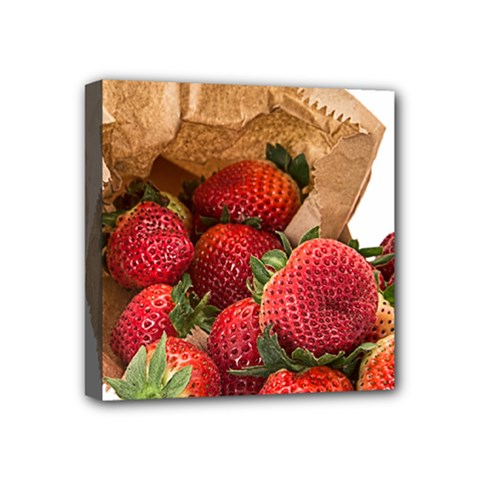 Strawberries Fruit Food Delicious Mini Canvas 4  X 4  by Nexatart