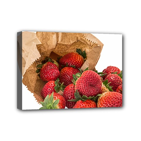 Strawberries Fruit Food Delicious Mini Canvas 7  X 5