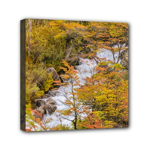 Colored Forest Landscape Scene, Patagonia   Argentina Mini Canvas 6  X 6  by dflcprints
