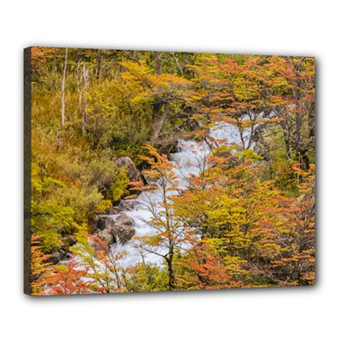 Colored Forest Landscape Scene, Patagonia   Argentina Canvas 20  X 16  by dflcprints