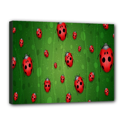 Ladybugs Red Leaf Green Polka Animals Insect Canvas 16  X 12  by Mariart