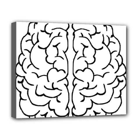 Brain Mind Gray Matter Thought Deluxe Canvas 20  X 16   by Nexatart