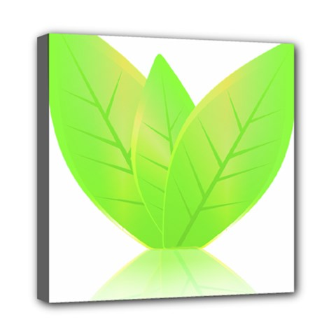 Leaves Green Nature Reflection Mini Canvas 8  X 8  by Nexatart
